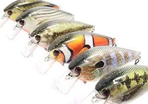 Best Largemouth Bass Lures