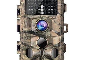 Best Trail Cameras For The Money