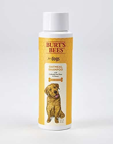 Burt's Bees for Dogs Shampoo and Conditioner