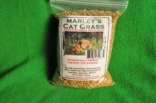 Marley's Cat Grass 1 lb Organic & Non-GMO Wheat Grass