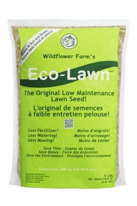 ECO-LAWN GRASS SEED BLEND Low Maintenance Lawn